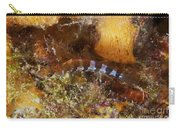 Saddled Blenny, Bonaire, Caribbean Carry-all Pouch