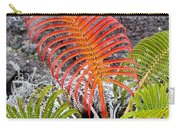 Sadleria Fern Hawaii Carry-all Pouch