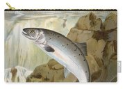 Salmon, C1900 Carry-all Pouch