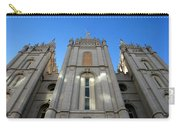Salt Lake Temple Carry-all Pouch