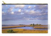 Saltwater Marshes At Cedar Key Florida Carry-all Pouch by Tim Fitzharris