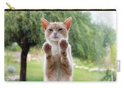 Salute Cat Carry-all Pouch