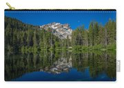 Sand Pond Panorama Carry-all Pouch
