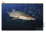 Sand Tiger Shark Off The Coast Of North Carry-all Pouch