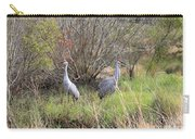 Sandhill Cranes In Colorful Marsh Carry-all Pouch