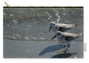 Sandpiper 5 Carry-all Pouch