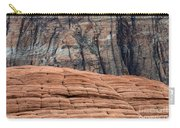 Sandstone Ballet Carry-all Pouch