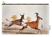 Sassaby And Hartebeest, Carry-all Pouch