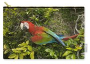 Scarlet Macaw Ara Macao Adult Perching Carry-all Pouch