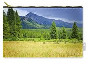 Scenic View In Canadian Rockies Carry-all Pouch by Elena Elisseeva