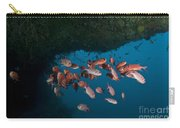 School Of Red Bigeye Under A Rocky Carry-all Pouch by Mathieu Meur