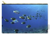 School Of Surgeonfish, Christmas Carry-all Pouch