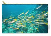 Schooling Bigeye Snappers Carry-all Pouch