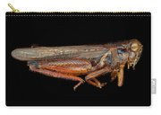 Science - Entomology - The Specimin Carry-all Pouch