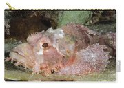 Scorpionfish, Indonesia Carry-all Pouch