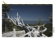Sculpture By Mother Nature Carry-all Pouch
