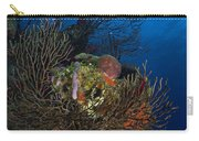 Sea Fan Seascape, Belize Carry-all Pouch