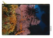 Sea Fans And Crinoid, Fiji Carry-all Pouch