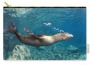 Sea Lion Blowing Bubbles, Los Islotes Carry-all Pouch