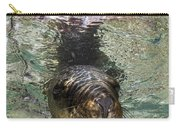 Sea Lion Portrait, Los Islotes, La Paz Carry-all Pouch by Todd Winner