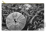 Sea Urchin On Seaweed Carry-all Pouch by David Rucker