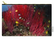 Sea Whips And Soft Coral, Fiji Carry-all Pouch