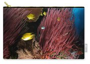 Sea Whips, Fiji Carry-all Pouch
