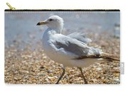 Seagull Carry-all Pouch by Betsy Knapp