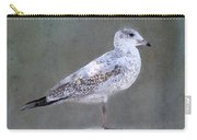 Seagull Carry-all Pouch by Betty LaRue