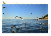 Seagulls Over Lake Michigan Carry-all Pouch