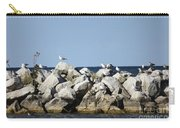 Seaguls On Boulders In Lake Erie Carry-all Pouch