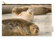 Seal 3 Carry-all Pouch
