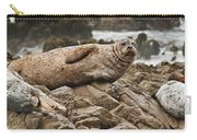Seal Old Timers Carry-all Pouch