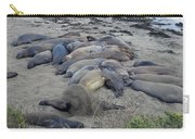 Seal Spa. Sand Bath Carry-all Pouch