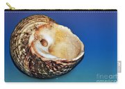Seashell Wall Art 2 Carry-all Pouch