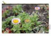 Seaside Fleabane Flowers Carry-all Pouch
