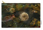 See Of Fossil Three Carry-all Pouch