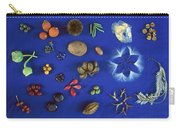 Seed Diversity, Barro Colorado Island Carry-all Pouch