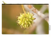 Seed Pod On Sycamore Tree Carry-all Pouch