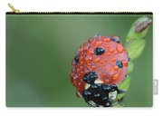 Seven-spotted Lady Beetle On Grass With Dew Carry-all Pouch