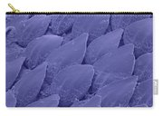Shark Skin, Sem Carry-all Pouch by Ted Kinsman