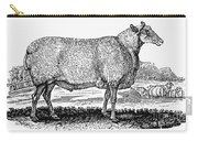 Sheep, C1800 Carry-all Pouch by Granger