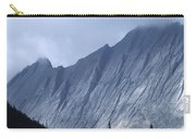 Sheer Mountain Face Carry-all Pouch