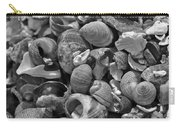 Shells V Carry-all Pouch