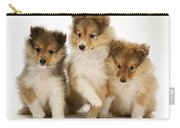 Sheltie Puppies Carry-all Pouch