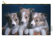 Sheltie Puppies Carry-all Pouch by Photo Researchers, Inc.