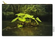 Shine On Me Carry-all Pouch by Svetlana Sewell