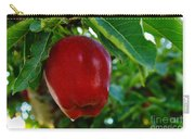 Shiny Red And Ripe  Carry-all Pouch