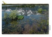 Shore Reflections Of Mt Tallac Carry-all Pouch