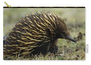 Short-beaked Echidna Tachyglossus Carry-all Pouch